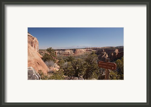 Hiking National Monument  Framed Print By Michael J Bauer