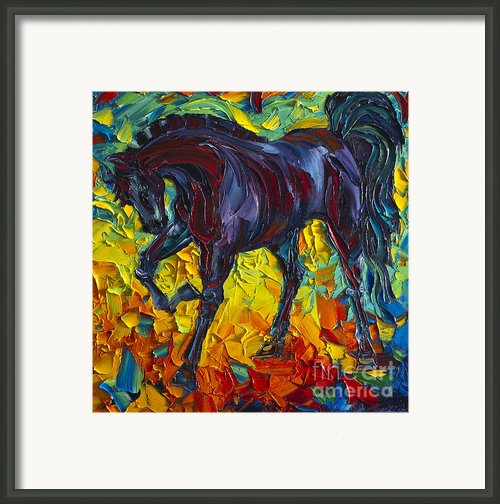 Horse Framed Print By Willson Lau