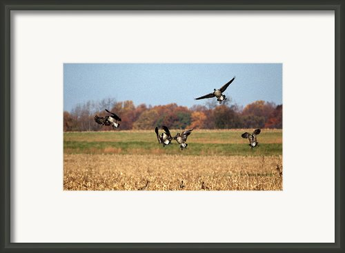 Incoming Framed Print By Skip Willits