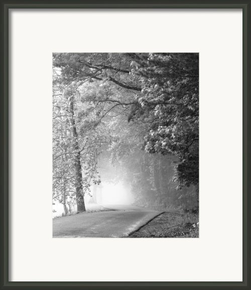 Into The Fog Framed Print By Andrew Soundarajan