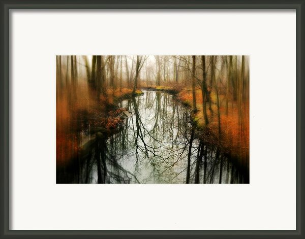 Just One Wish Framed Print By Diana Angstadt