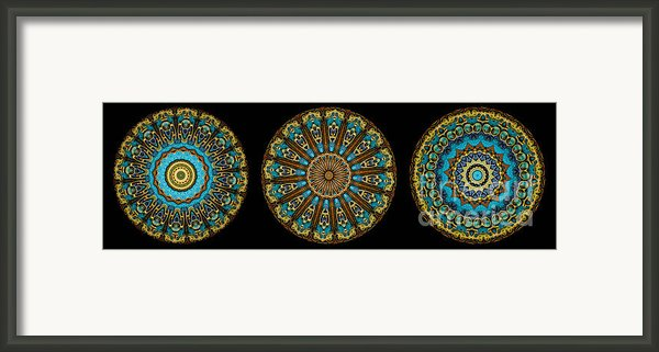 Kaleidoscope Steampunk Series Triptych Framed Print By Amy Cicconi