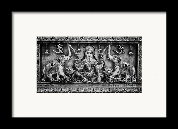 Lakshmi  Framed Print By Tim Gainey