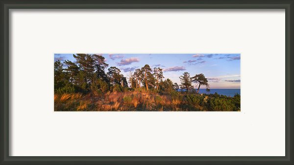 National Park Valaamsky Framed Print By Anonymous