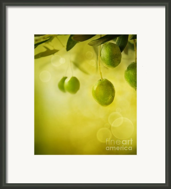 Olives Design Background Framed Print By Mythja  Photography