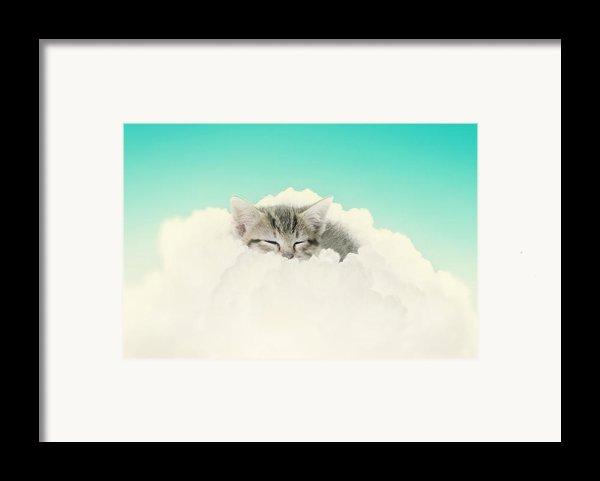On Cloud Nine Framed Print By Amy Tyler