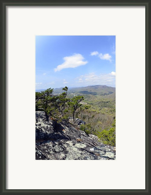 On The Edge Framed Print By Susan Leggett