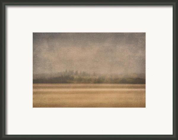 Oregon Rain Framed Print By Carol Leigh