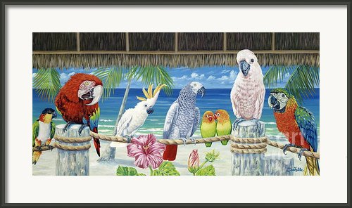 Parrots In Paradise Framed Print By Danielle  Perry