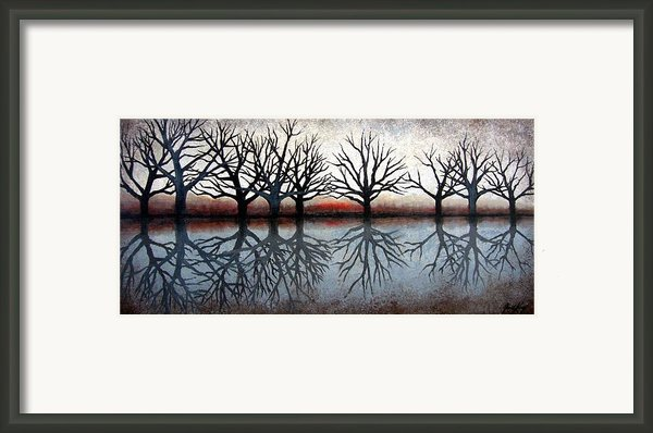 Reflecting Trees Framed Print By Janet King