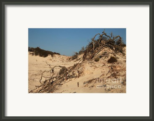 St Joseph Sand Dunes Framed Print By Adam Jewell