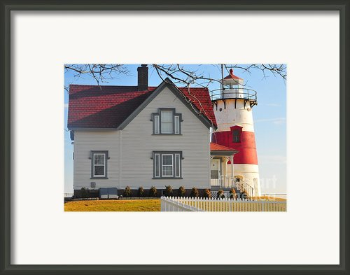 Startford Point Light Framed Print By Catherine Reusch  Daley