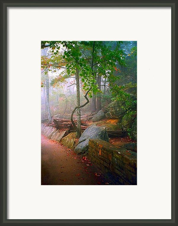 To The Pinnacle Framed Print By Julie Dant