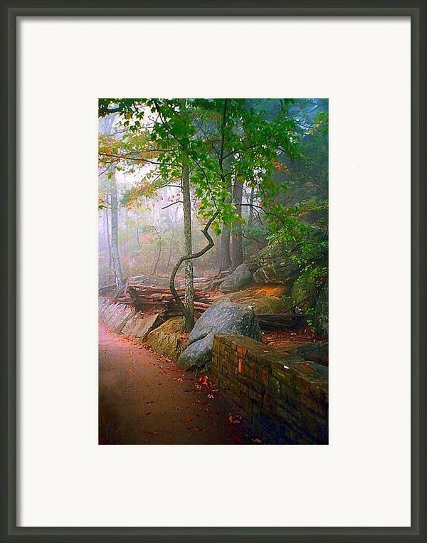 To The Pinnacle Framed Print By Julie Dant