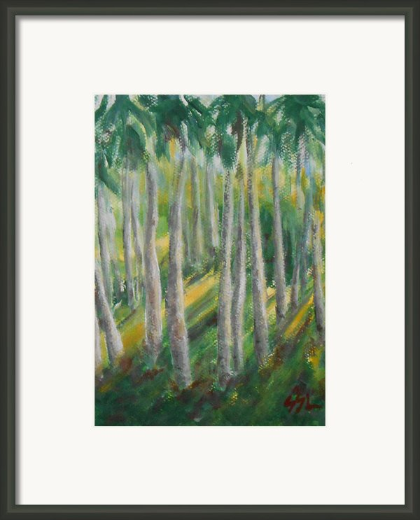 Tropical Framed Print By Jane  See