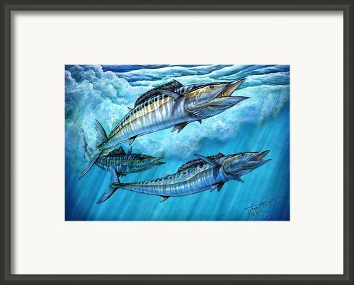 Wahoo In Freedom Framed Print By Terry Fox
