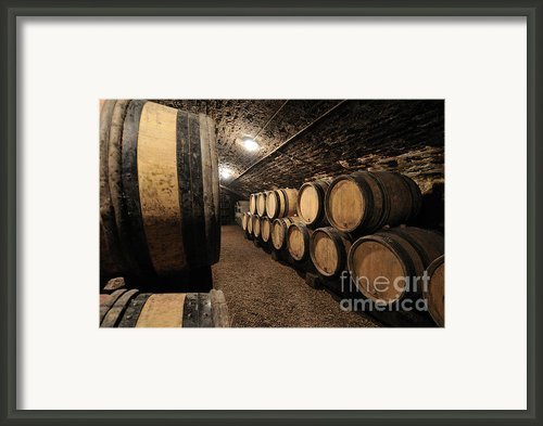 Wine Barrels In A Cellar. Cote D