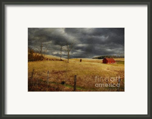 Winter Begins Framed Print By Lois Bryan