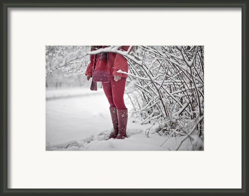 Winter... Framed Print By Renata Vogl