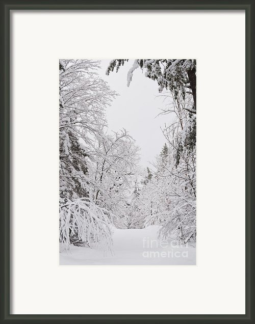 Winter Road Framed Print By Cheryl Baxter