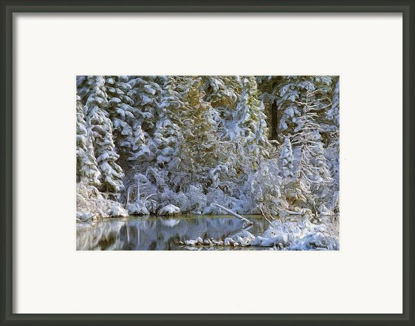 Winter Scene Framed Print By Pat Now