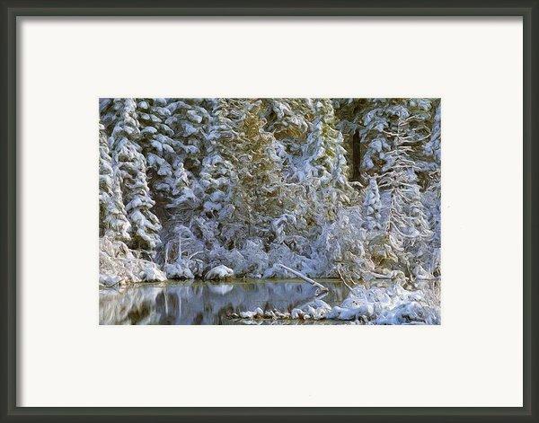 Winter Scene Framed Print By Pat Now