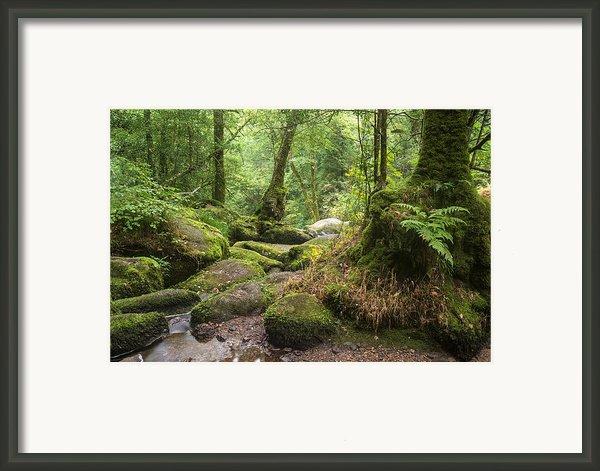 Landscape Of Becky Falls Waterfall In Dartmoor National Park Eng Framed Print By Matthew Gibson