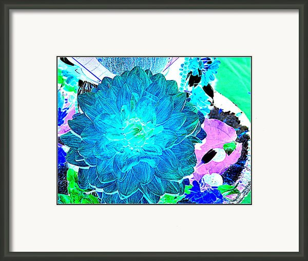 Flowers Flowers And Flowers Framed Print By Anand Swaroop Manchiraju