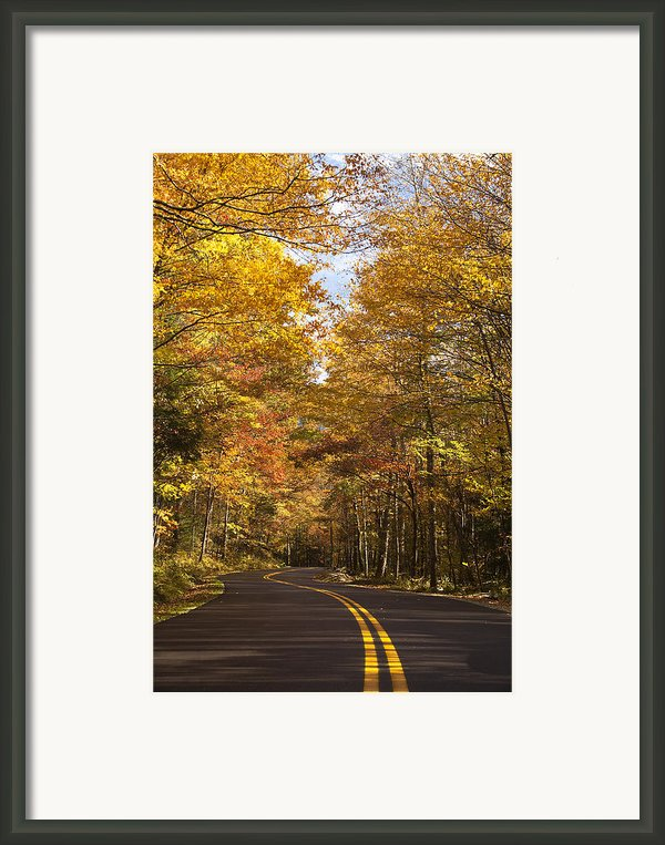 Autumn Drive Framed Print By Andrew Soundarajan