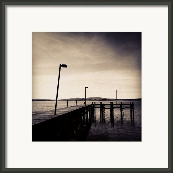 2 Bird Dock Framed Print By Cml Brown