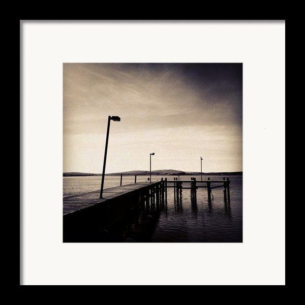 2 Bird Dock Framed Print By Cml Brown