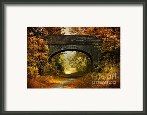 Bridge Framed Print By Svetlana Sewell