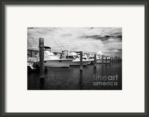 Charter Fishing Boats Charter Boat Row City Marina Key West Florida Usa Framed Print By Joe Fox