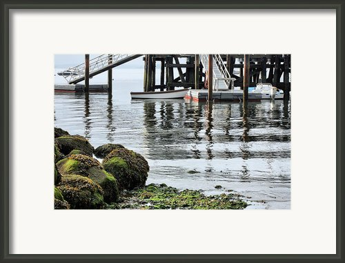 Dockside Framed Print By Jc Findley