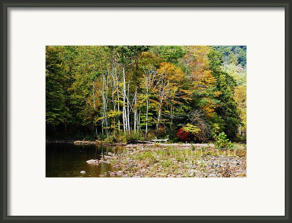 Fall Color River Framed Print By Thomas R Fletcher