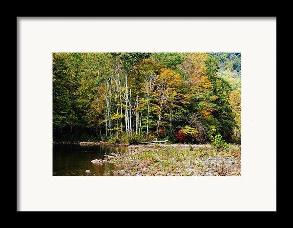 Fall Color River Framed Print By Thomas R Fletcher