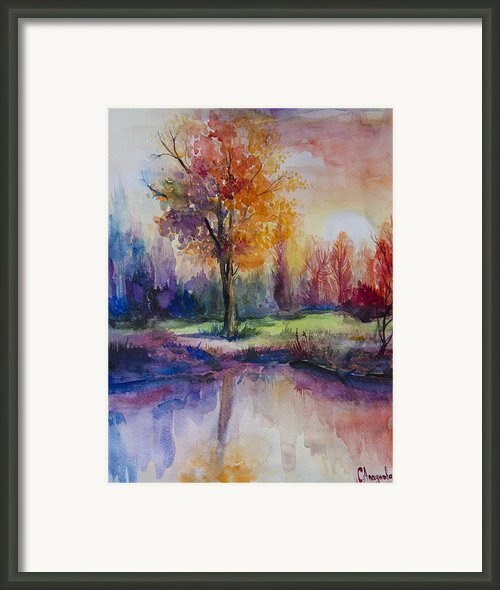 Forest Framed Print By Slaveika Aladjova