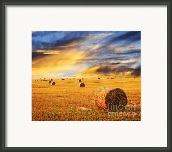 Golden Sunset Over Farm Field With Hay Bales Framed Print By Elena Elisseeva