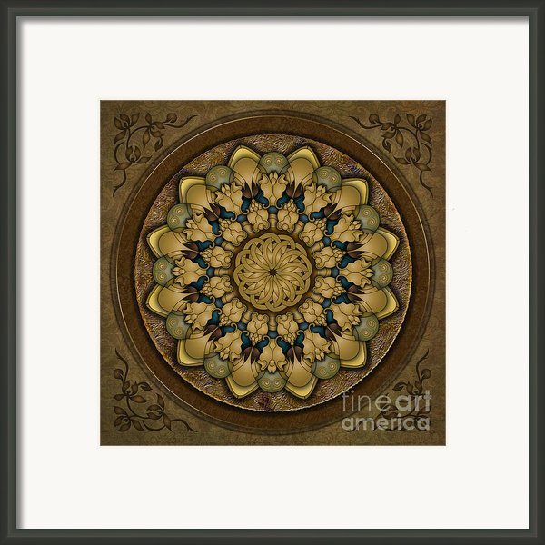 Mandala Earth Shell Framed Print By Bedros Awak