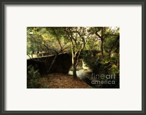 Pedestrian Bridge And Strawberry Creek  . 7d10152 Framed Print By Wingsdomain Art And Photography