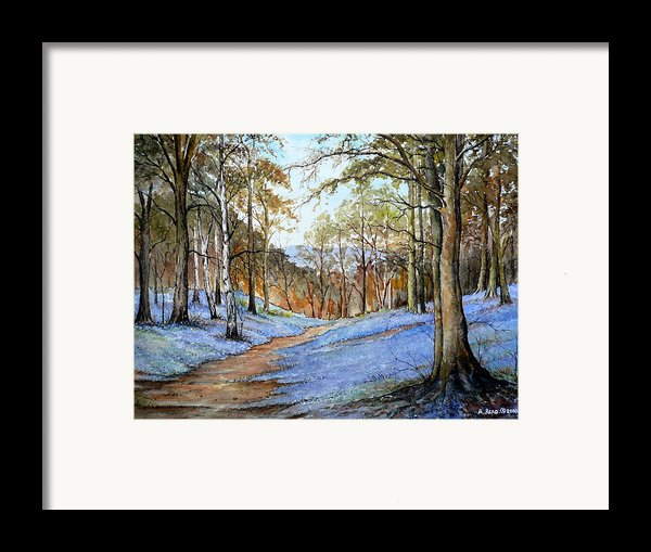 Spring In Wentwood Framed Print By Andrew Read
