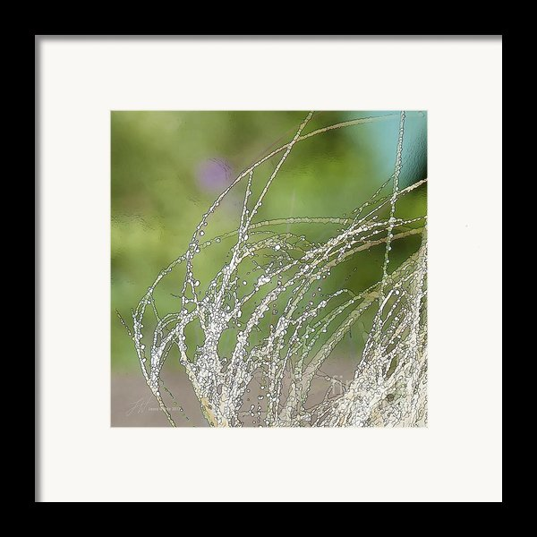 Summer Grass Framed Print By Artist And Photographer Laura Wrede