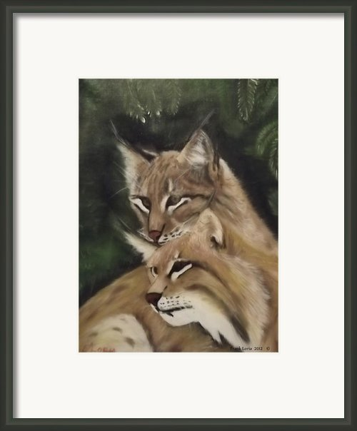 We See You Framed Print By Frank Loria