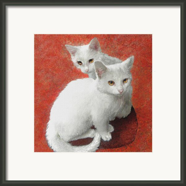 White Kittens Framed Print By Jane Schnetlage