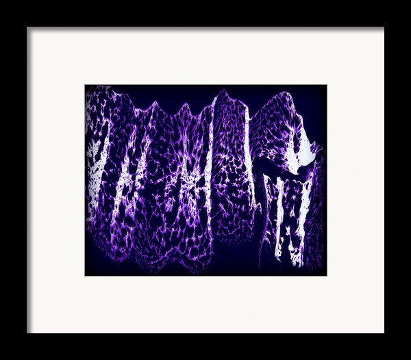 Abstract 67 Framed Print By J D Owen