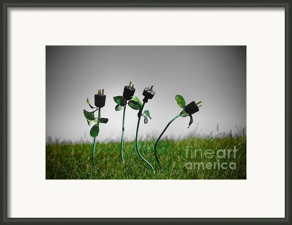 Growing Green Energy Framed Print By Amy Cicconi