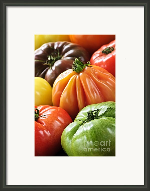 Heirloom Tomatoes Framed Print By Elena Elisseeva