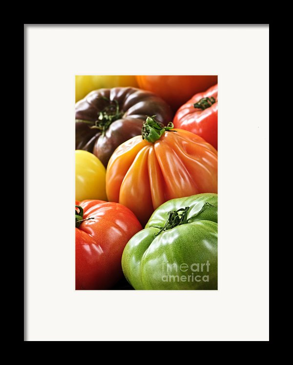 Heirloom Tomatoes Framed Print By Elena Elisseeva