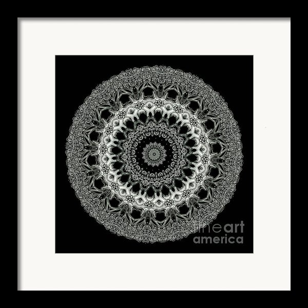 Kaleidoscope Ernst Haeckl Sea Life Series Black And White Set 2 Framed Print By Amy Cicconi