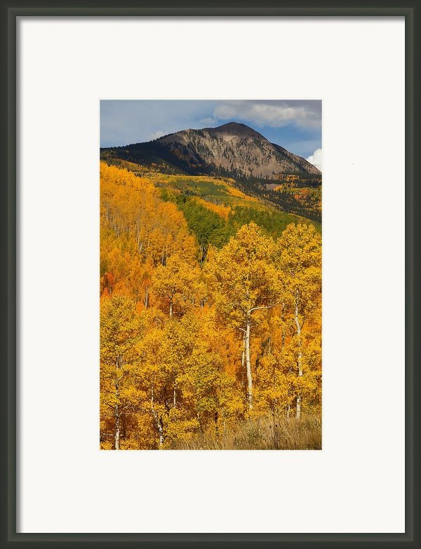 San Juan Mountains In Autumn Framed Print By Jetson Nguyen